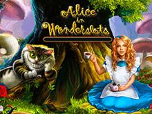 В казино на деньги Алиса В Стране Чудес