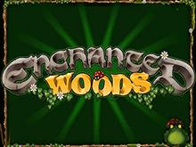 Enchanted Woods в виртуальном казино на деньги с джекпотом
